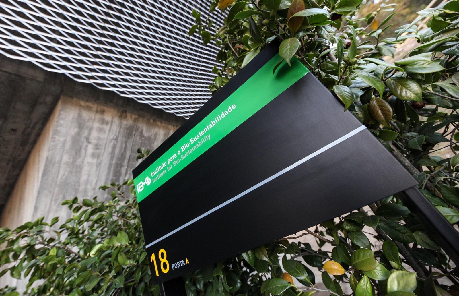 Placa indicativa do IB-S (foto de Nuno Gonçalves/UMdicas)